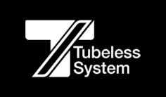 Giant Tubeless System